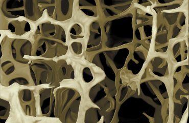 osteoporosis jesús márquez nutrición
